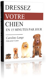 methode-dresser-son-chien